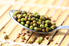 Whole green moong Stock Photos