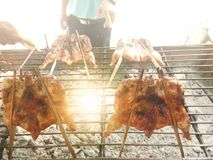 Whole grilled chicken on a charcoal stove royalty free stock image