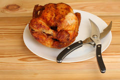 Whole grilled chicken with shears for poultry on white plate Royalty Free Stock Image