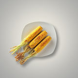 Whole Grilled Corn on a plate Royalty Free Stock Image