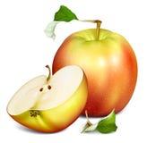 Whole half cut apples Stock Image