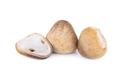 Whole and half cut raw mushroom on white background. Whole and half cut raw mushroom on a white background Royalty Free Stock Photography