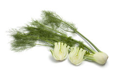 Whole and half fennel bulb Stock Photo