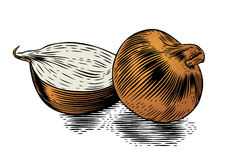 Whole and half onion Royalty Free Stock Images