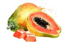 Whole, half and sliced sweet ripe papaya fruit. Watercolor hand drawn illustration, isolated on white background.  stock illustration