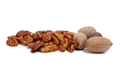 Whole and halved pecans on white Stock Image