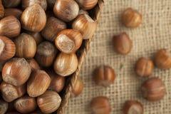 Whole Hazelnuts Stock Images