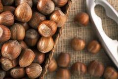 Whole Hazelnuts Royalty Free Stock Image