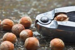 Whole hazelnuts on old table Royalty Free Stock Photo