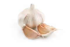 A whole head of garlic and cloves Stock Image