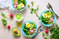 Whole healthy meal served in a bowls. Healthy fresh detox meal with quinoa, broccoli and avocado served with green salad dressing sauce and virgin olive oil Royalty Free Stock Images