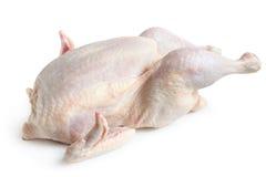 Whole hen. On a white background Stock Photos