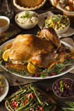 Whole Homemade Thanksgiving Turkey Royalty Free Stock Photography