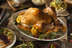 Whole Homemade Thanksgiving Turkey Stock Images
