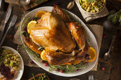 Whole Homemade Thanksgiving Turkey Royalty Free Stock Photos