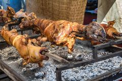 A whole lamb being roasted on a fire Royalty Free Stock Photo