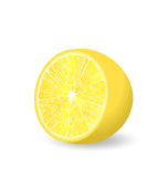 Whole lemon with leaf, slice and flower  Royalty Free Stock Photos