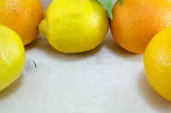 Whole lemons and oranges in a circle Stock Images
