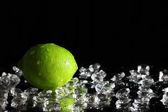 Whole lime Stock Photography