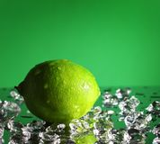 Whole lime royalty free stock images