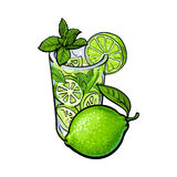 Whole lime and glass of juice, mojito, cocktail with ice. Whole lime and glass of freshly squeezed juice, mojito, cocktail with ice and mint, sketch vector vector illustration