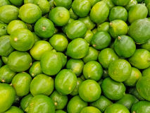 Whole limes in a pile Royalty Free Stock Image