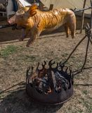 A whole little pig on a skewer over a fire of piled logs is roasted and grilled royalty free stock images