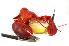 Whole Lobster with Butter Royalty Free Stock Photo