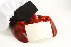 Lobster in Chefs Hat holding Menu or Recipe Card. Whole lobster wearing a chefs hat holding a blank recipe or menu card Royalty Free Stock Photos