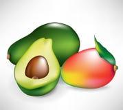 Whole mango fruit and avocado Stock Photos