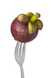 Whole mangosteen held by a fork Royalty Free Stock Images
