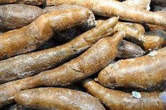 Whole manioc Royalty Free Stock Image