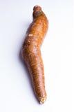 Whole manioc, cassava, on white background, closeup Royalty Free Stock Images