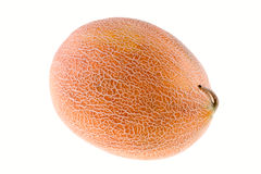 Whole melon. On white background Stock Image