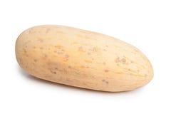 Whole melon Royalty Free Stock Photography