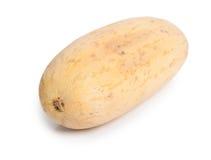 Whole melon Stock Photography