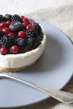 Whole mini cheesecake with blackberries, blueberries and red currant on plate Royalty Free Stock Photography