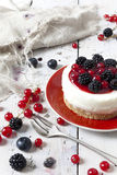 Whole mini cheesecake with blackberries and red currant on plate and berries on table Stock Image