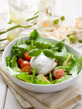 Whole mozzarella with salad Royalty Free Stock Photo
