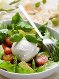 Whole mozzarella with salad Royalty Free Stock Photography