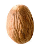 Whole Nutmeg Stock Photo