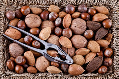 Whole nuts in a basket Royalty Free Stock Photos