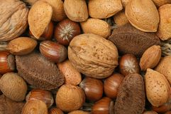 Whole nuts closeup. Closeup of whole shell on nuts royalty free stock photos