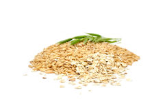 Whole Oats, Oat Flakes And Ear of Oats Stock Photography