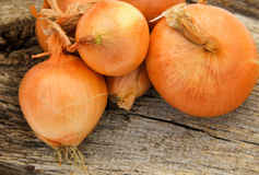 Whole onion bulbs on wooden background Royalty Free Stock Images