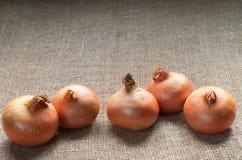 Whole onions close up Stock Photo
