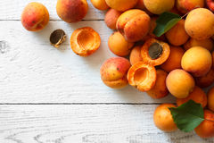 Whole orange apricots with red blush, from above, space for text Stock Images