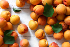 Whole orange apricots with red blush and leaves. Background from Royalty Free Stock Photos