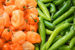 Whole orange/green vegetable peppers Stock Photography