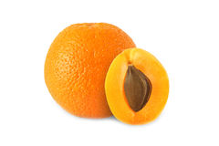 Whole orange and half apricot with stone isolated. On white background stock images